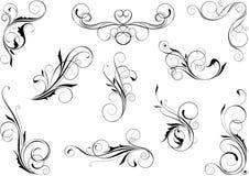 Sistema floral del remolino ilustración del vector
