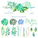 Sistema floral del vector Colección floral colorida con las hojas y las flores Imagenes de archivo