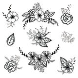 Sistema floral del vector Colección gráfica con las hojas y las flores, elementos de dibujo Foto de archivo