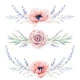 Sistema floral del vintage de la acuarela Foto de archivo