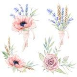 Sistema floral del vintage de la acuarela Fotografía de archivo libre de regalías
