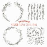 Sistema floral dibujado mano ilustración del vector