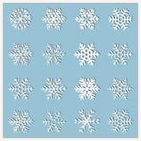sistema grande de diversa haber tallado, de cordón o de copos de nieve simples libre illustration