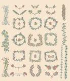 Sistema grande de elementos florales del diseño gráfico Imagenes de archivo