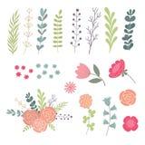 Sistema grande de hojas, de ramitas y de flores verdes Diseñador de los elementos del diseño Foto de archivo