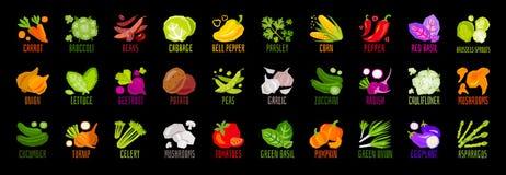 Sistema grande de iconos del condimento de la especia de las hierbas de las nueces de las verduras aislados en fondo negro El pon ilustración del vector