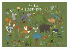 Sistema grande de illustraitions dibujados mano del bosque con los animales de la historieta del color ilustración del vector
