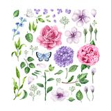 Sistema grande de rosas de las flores, de hortensia, de flores del manzano, de hojas, de pétalos y de mariposas aislados en el fo stock de ilustración