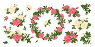 Sistema grande de rosas rosadas y blancas, y una guirnalda de flores ilustración del vector