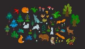 Sistema grande del vector de elementos del bosque aislados en fondo oscuro Caracteres, árboles e hierbas animales lindos del colo fotos de archivo