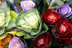 Sistema hermoso de brotes de flor Fotos de archivo