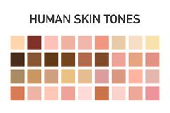 Sistema humano de la paleta de colores del tono de piel aislado en fondo transparente Diseño del arte Ilustración del vector fotografía de archivo libre de regalías