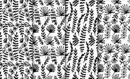 Sistema inconsútil dibujado mano floral del modelo Flores de lujo abstractas dibujadas mano Estilo dibujado mano popular Ornament Fotos de archivo