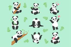 Sistema lindo de Panda Character In Different Situations libre illustration