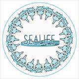 Sistema lindo del adorno del ejemplo del vector de la historieta de la insignia del delf?n del sealife Fauna subacu?tica aislada  stock de ilustración