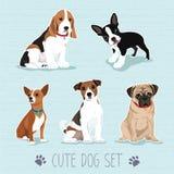 Sistema lindo del perro Imágenes de archivo libres de regalías