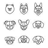 Sistema linear del icono de las razas de los perros Perro de Pomerania de Pomeranian, barro amasado, perro esquimal, perro basset Ilustración del Vector