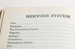 Sistema nervoso Fotografia de Stock Royalty Free