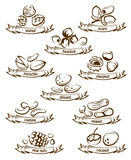 Sistema Nuts del icono Imagen de archivo