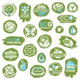 Sistema orgánico del icono Imagen de archivo