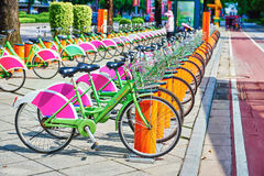 Sistema público da bicicleta Imagens de Stock Royalty Free