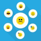 Sistema plano de la cara del icono de los objetos de la alegría, dormidos, alegres y otro del vector También incluye confuso, mar Fotos de archivo libres de regalías