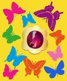 Sistema plano de la piedra preciosa de las mariposas Imagen de archivo libre de regalías