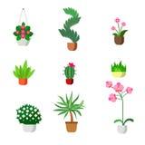 Sistema plano del icono de la flora del sitio de las plantas del vector interior de los houseplants Foto de archivo libre de regalías