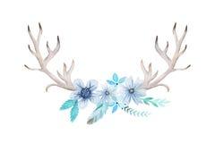 Sistema rústico de la acuarela de flores y de hojas Imagenes de archivo