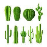 Sistema realista del cactus stock de ilustración