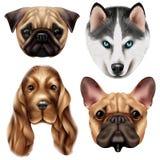 Sistema realista del icono de la raza del perro stock de ilustración