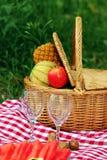 Sistema romántico de la comida campestre Fotos de archivo