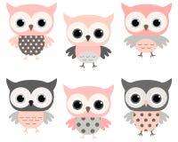 Sistema rosado y gris lindo del vector de los búhos de la historieta Imagen de archivo