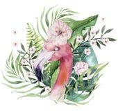 Sistema tropical de los p?jaros de la acuarela exhausta de la mano del flamenco con las hojas Ejemplos color de rosa ex?ticos del libre illustration