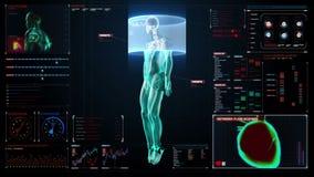 Sistema vascolare umano del sangue e scheletrico dentro l'esplorazione del corpo umano nell'esposizione medica digitale pannello  royalty illustrazione gratis