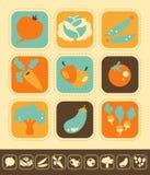 Sistema vegetal del icono Imagen de archivo libre de regalías