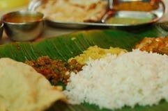 Sistema vegetariano del indio Fotografía de archivo