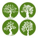 Sistema verde del icono de la silueta del árbol stock de ilustración