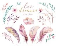 Sistema vibrante dibujado mano de la pluma de las pinturas de la acuarela Alas color de rosa del estilo de Boho Ilustración aisla Fotografía de archivo