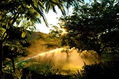 Sistemas de extinção de incêndios de Sunglow Fotografia de Stock