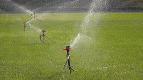 Sistemas de extinção de incêndios da irrigação do jardim do movimento lento que molham o gramado filme
