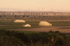 Sistemas de irrigación en campos verdes Fotos de archivo