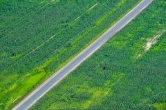 Sistemi con un'aria dell'agricoltura di vista dell's-occhio del ` dell'uccello bella Fotografia Stock