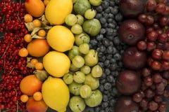 Sistemi dei frutti nei colori dell'arcobaleno Fotografie Stock Libere da Diritti