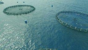 Sistemi della gabbia di piscicoltura video d archivio