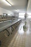 Sistemi di mungitura automatici per le capre in azienda agricola moderna Fotografie Stock