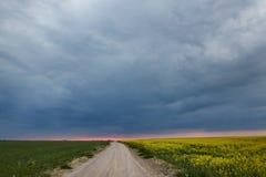 Sistemi il giallo verde contro un fondo delle nuvole temporalesche Immagini Stock