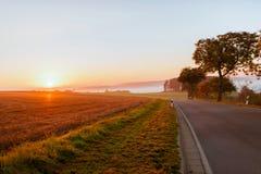 Sistemi sulla mattina dell'alba nella nebbia nel tempo di autunno Immagine Stock Libera da Diritti