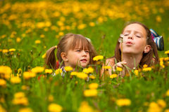 Sister blowing dandelion seeds away Stock Photos
