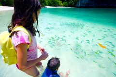 Sister and brother feeding tropical fish Stock Photography
